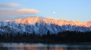 Queenstown Bureau launches dedicated web page