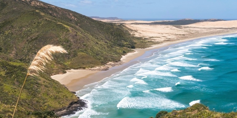 Cape Reinga in Northland, New Zealand